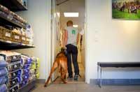Täby Hundpensionat reception